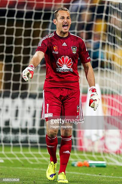 Glen Moss of the Phoenix makes a point to the linesman during the round five A-League match between the Wellington Phoenix and the Western Sydney...