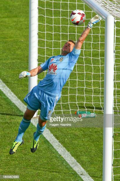 Glen Moss of the Phoenix makes a save during the round three ALeague match between Wellington Phoenix and the Newcastle Jets at McLean Park on...