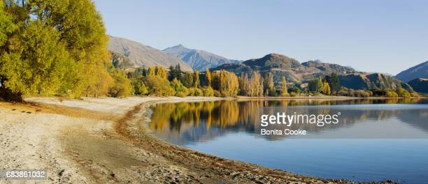 glendhu bay shoreline panorama, lake wanaka - südinsel von neuseeland stock-fotos und bilder