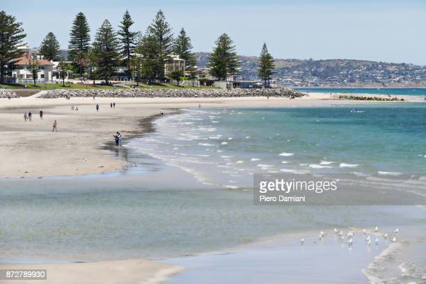 glenelg beach - south australia stock pictures, royalty-free photos & images
