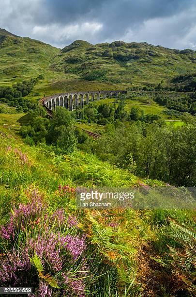 GlenFinnan Viaduct and flowers