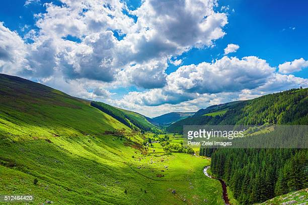 Glenmacnass Valley, County Wicklow, Ireland.