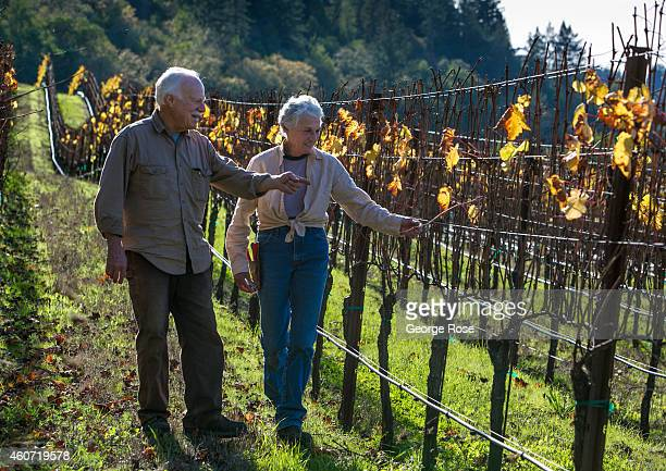 Glenn and Pamela Gunsalus owners of Gunsalus Vineyard in the Russian River Valley are viewed on November 17 near Healdsburg California Warm sunny...