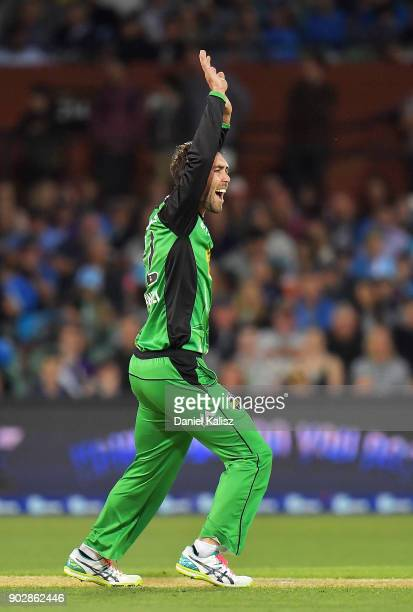 Glenn Maxwell of the Melbourne Stars appeals during the Big Bash League match between the Adelaide Strikers and the Melbourne Stars at Adelaide Oval...