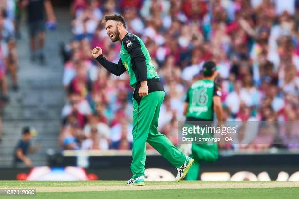 Glenn Maxwell of the Stars celebrates taking the wicket of Joe Denly of the Sixers during the Big Bash League match between the Sydney Sixers and the...