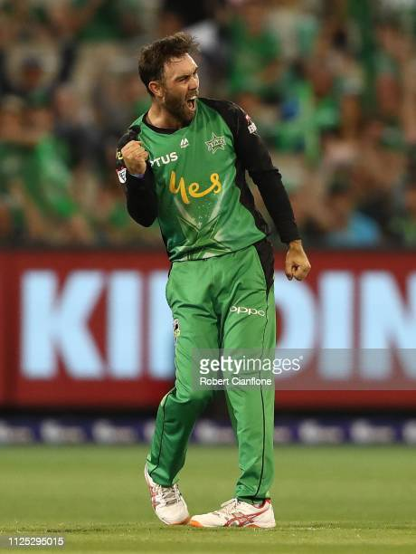 Glenn Maxwell of the Stars celebrates the wicket of Brendon McCullum of the Brisbane Heat during the Big Bash League match between the Melbourne...