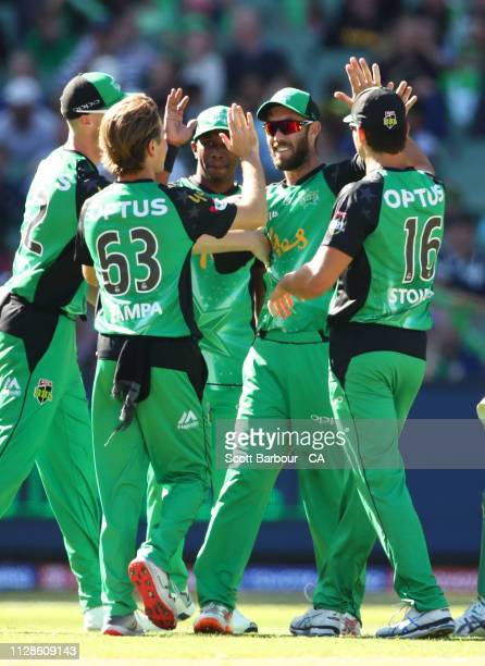 Glenn Maxwell of the Stars is congratulated by his teammates after taking a catch at slip to dismiss Sean Abbott of the Sixers during the Big Bash...