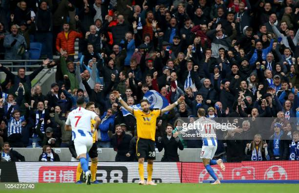 Glenn Murray of Brighton and Hove Albion celebrates after scoring his team's first goal during the Premier League match between Brighton Hove Albion...