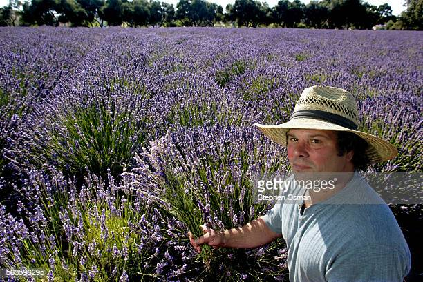 Glenn Thalheimer and his wife Meryl Tanz own Clairmont Farms which is open to the public More than five acres of lavender fields provide for the oils...