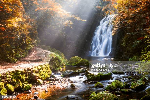 glenoe waterfall, county antrim, northern ireland - waterfall stock pictures, royalty-free photos & images