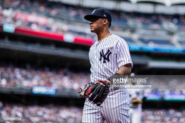 Gleyber Torres of the New York Yankees looks on during the game against the Texas Rangers at Yankee Stadium on Sunday August 12 2018 in the Bronx...