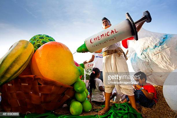Glimpse showing harmful chemical being injected to fruit during a procession in a carnival Goa Carnivals Goa India