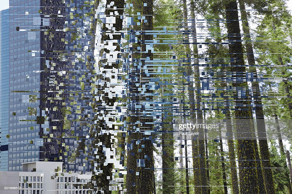 Glitchtransition Of City To Forest Stock Photo - Getty Images