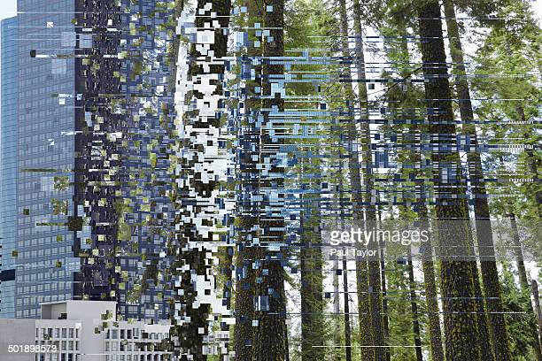 Glitch/Transition of City to Forest