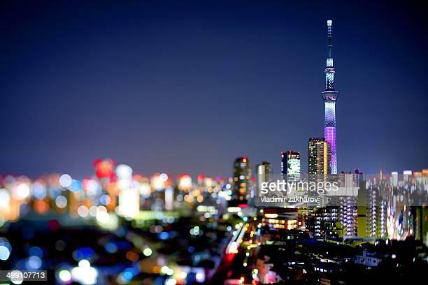 Glittering cityscape of Tokyo at twilight