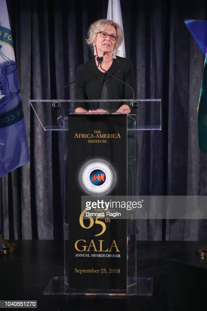 Global AIDS Coordinator Deborah L Birx speaks onstage during the Africa America Institute 65th Anniversary Gala at the American Museum of Natural...