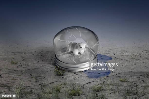 Global Warming Broken Snow Globe
