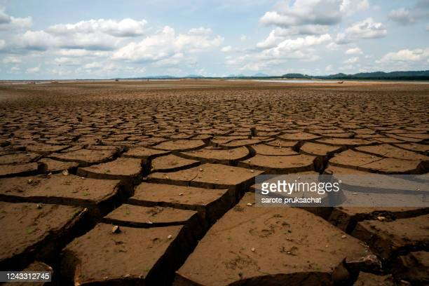 global warming concept . dry cracks in the land, serious water shortages. drought concept. - meteo estremo foto e immagini stock