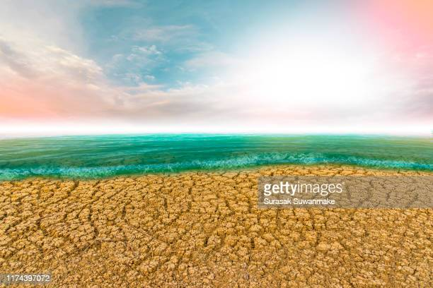 global warming day causes the water levels in the arid sea to land with a cracking. - giornata mondiale della terra foto e immagini stock
