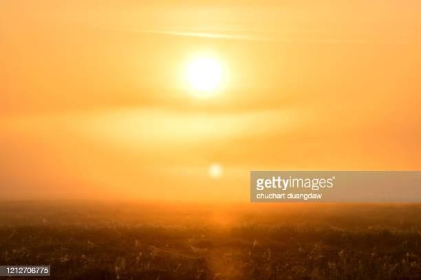 global warming, heat wave hot sun, climate change - värmebölja bildbanksfoton och bilder