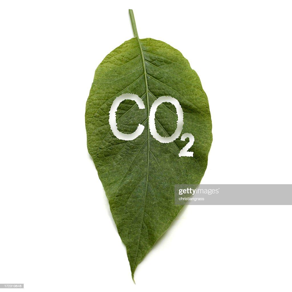 global warming : Stock Photo
