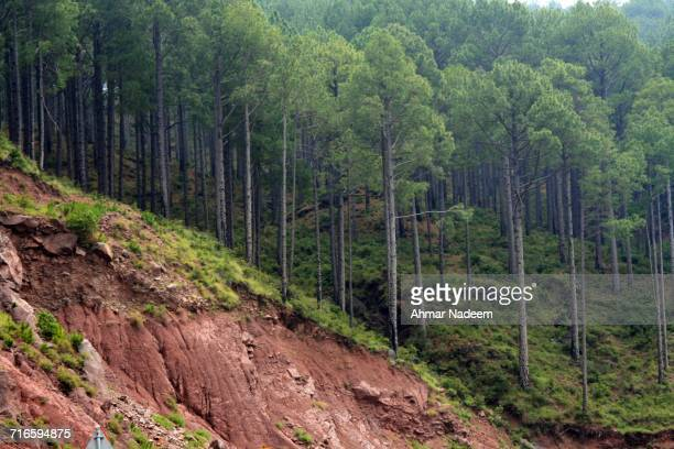 global warming - soil erosion stock photos and pictures