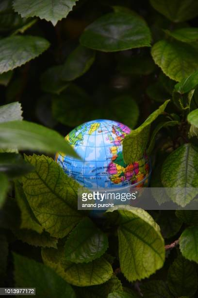 globe or earth in green leaves background - world environment day - world kindness day fotografías e imágenes de stock