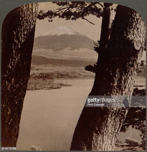 Glorious Fuji beloved by artists and poets seen through pines at Lake Motosu Japan' 1904 From The Underwood Travel Library Japan [Underwood Underwood...