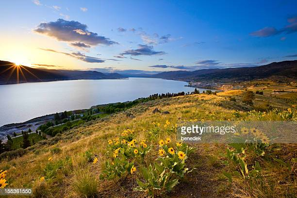 glorious sunset, lake landscape - kelowna stock pictures, royalty-free photos & images
