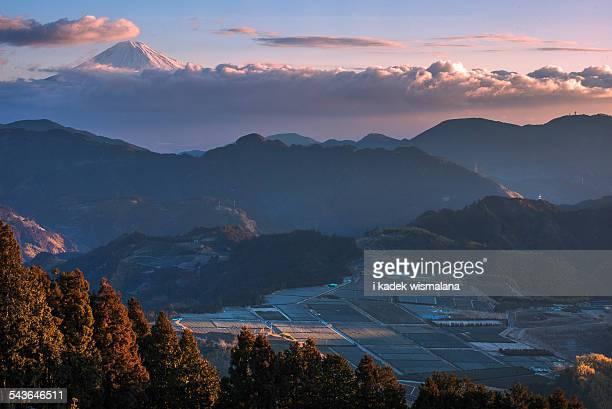 glory morning - 静岡県 ストックフォトと画像