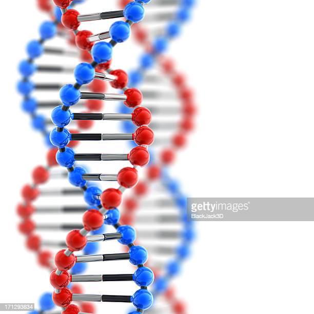 Glossy DNA