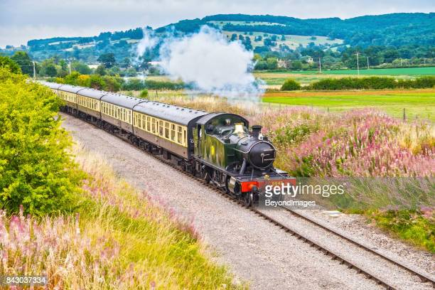 Gloucestershire Warwickshire Steam Railway train with wildflowers