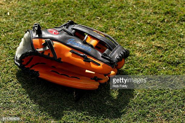A glove belonging to Giancarlo Stanton sits on the grass during a Miami Marlins workout on February 22 2016 in Jupiter Florida