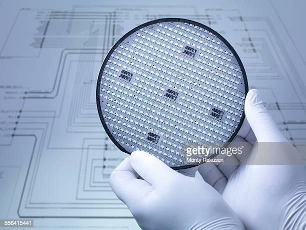 gloved hands holding silicon wafer in laboratory, close up - 半導体 ストックフォトと画像