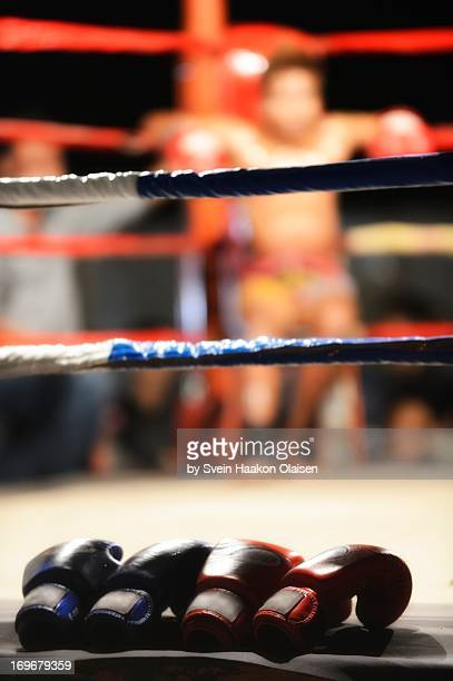 Gloves are off - Muay Thai