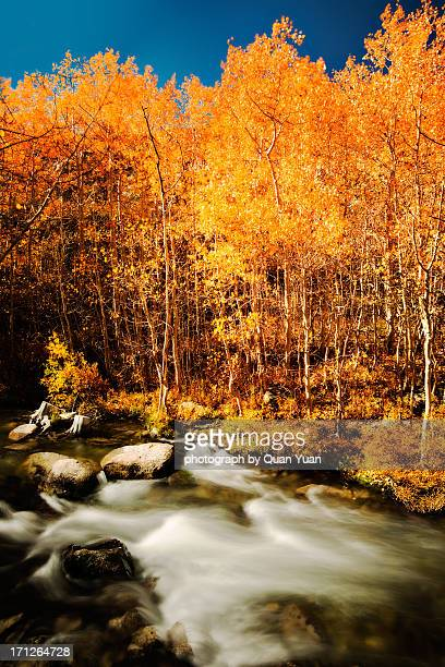 glow and flow - yuan quan stock pictures, royalty-free photos & images