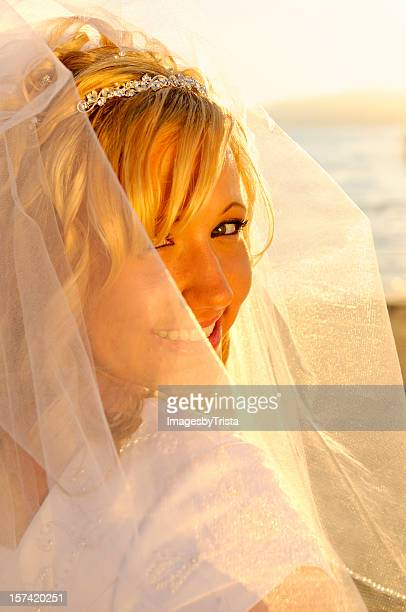 glowing bride - utah wedding stock pictures, royalty-free photos & images