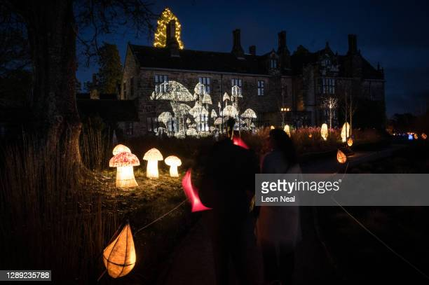 """Glowing mushrooms and animated projections are seen during the launch of """"Glow Wild"""" at Wakehurst on December 03, 2020 in Haywards Heath, England...."""