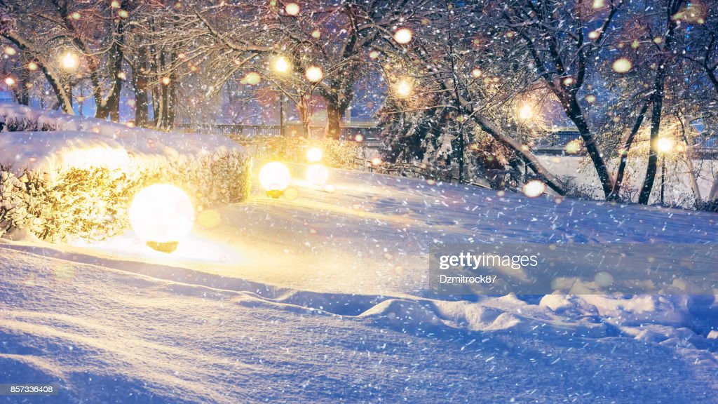 glowing snowflakes in night park for christmas xmas and new year background stock photo