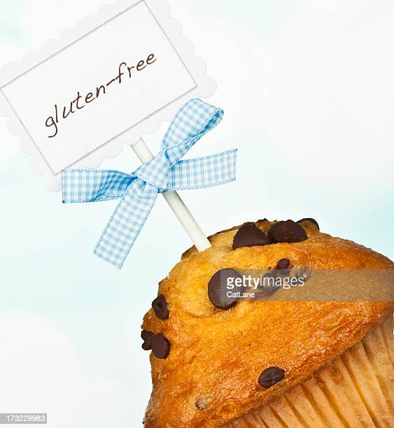 Gluten-Free Chocolate Chip Muffin