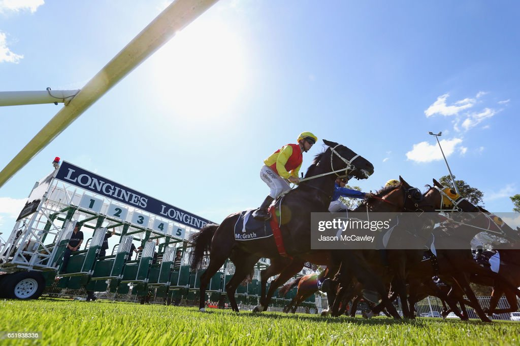 The 2017 Sydney Carnival - Ladies Day