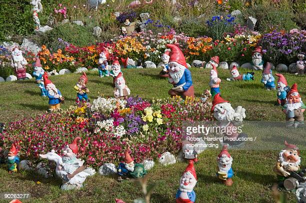 gnomes, port stanley, falkland islands, south america - grote groep dingen stockfoto's en -beelden