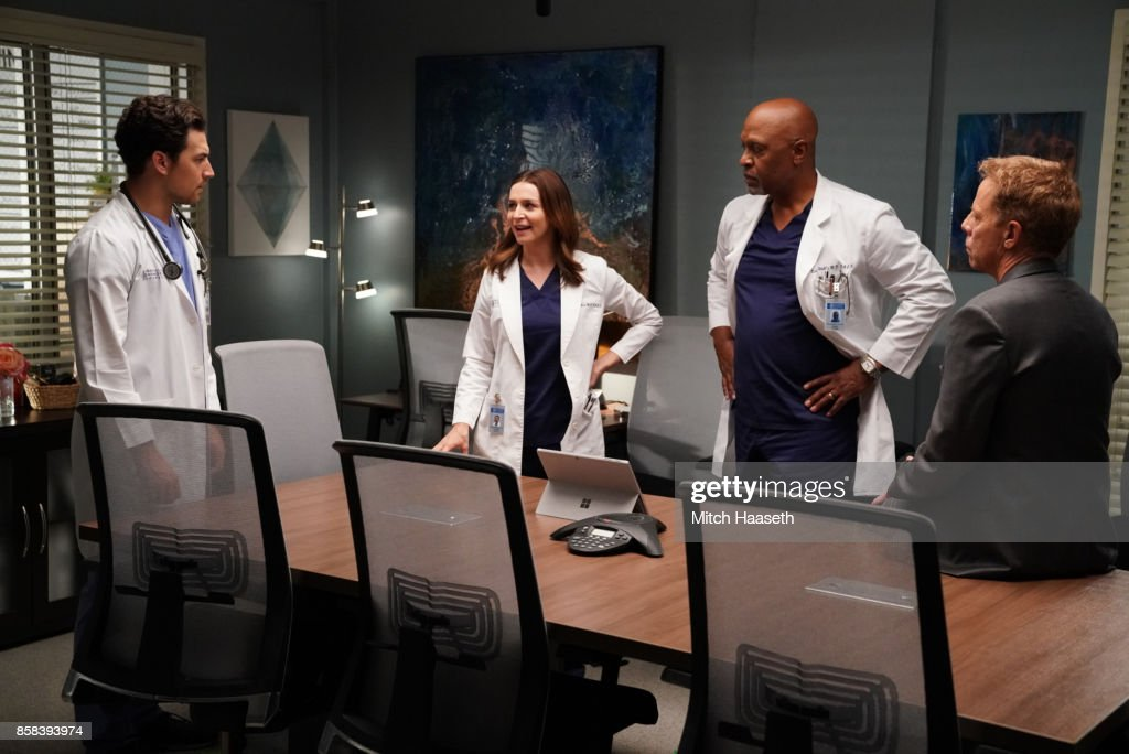 "ABC's ""Grey's Anatomy"" - Season Fourteen : News Photo"