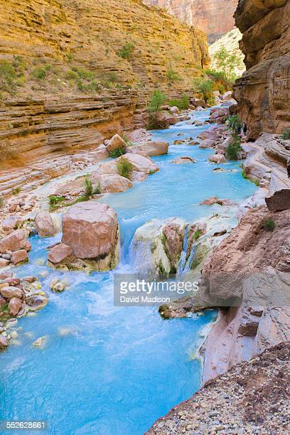 go find your national park - havasu creek stock photos and pictures