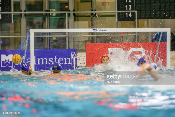 A goal of Pro Recco players during the Champions League water polo match between Pro Recco and Barceloneta on march 15 2019 at Piscina Monumentale in...