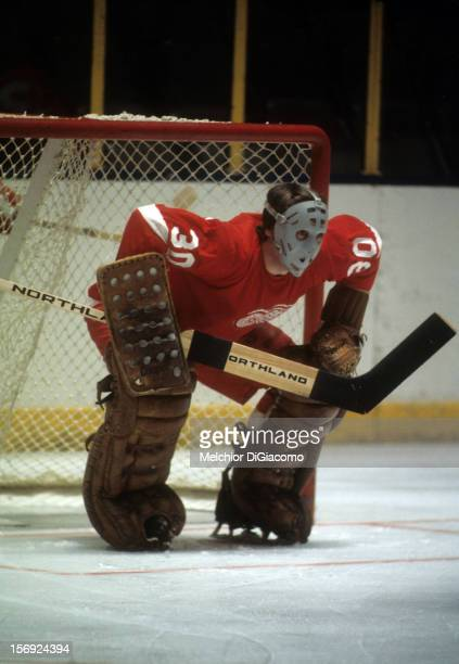 Goalie Al Smith of the Detroit Red Wings defends the net during an NHL game against the New York Rangers circa 1972 at the Madison Square Garden in...