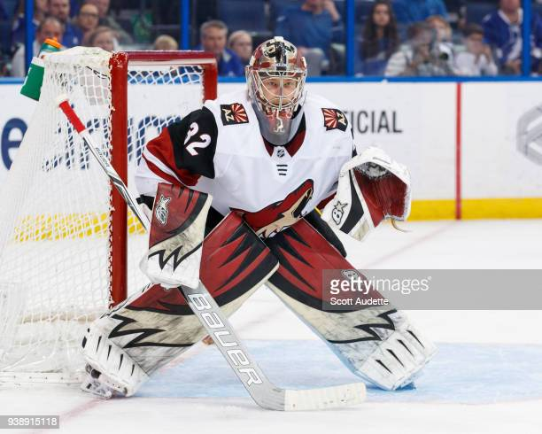 Goalie Antti Raanta of the Arizona Coyotes skates against the Tampa Bay Lightning at Amalie Arena on March 26 2018 in Tampa Florida n