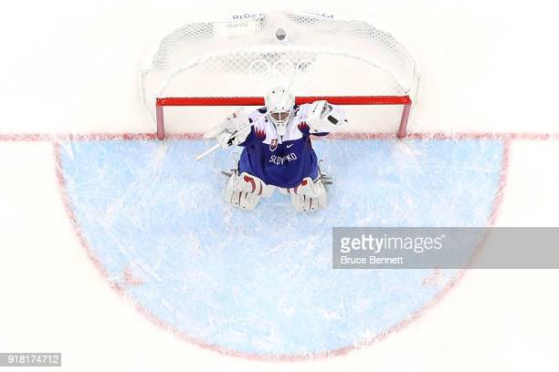 Goalie Branislav Konrad of Slovakia celebrates after defeating Olympic Athletes from Russia 32 during the Men's Ice Hockey Preliminary Round Group B...