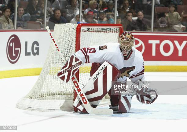 Goalie Brian Boucher of the Phoenix Coyotes protects the net from the Mighty Ducks of Anaheim during the game at the Arrowhead Pond on February 11,...