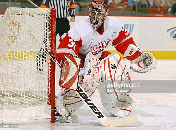 Goalie Curtis Joseph of the Detroit Red Wings protects the net from the Phoenix Coyotes during the game at the Glendale Arena on March 18 2004 in...